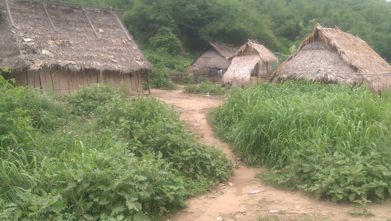 Jungle Trekking in Laos and Befriending Parasites