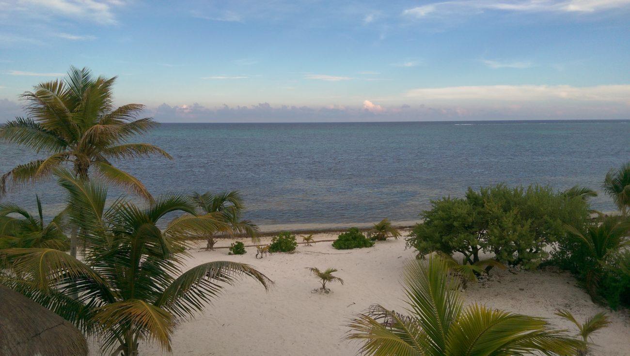 The Yucatan Experiment Begins