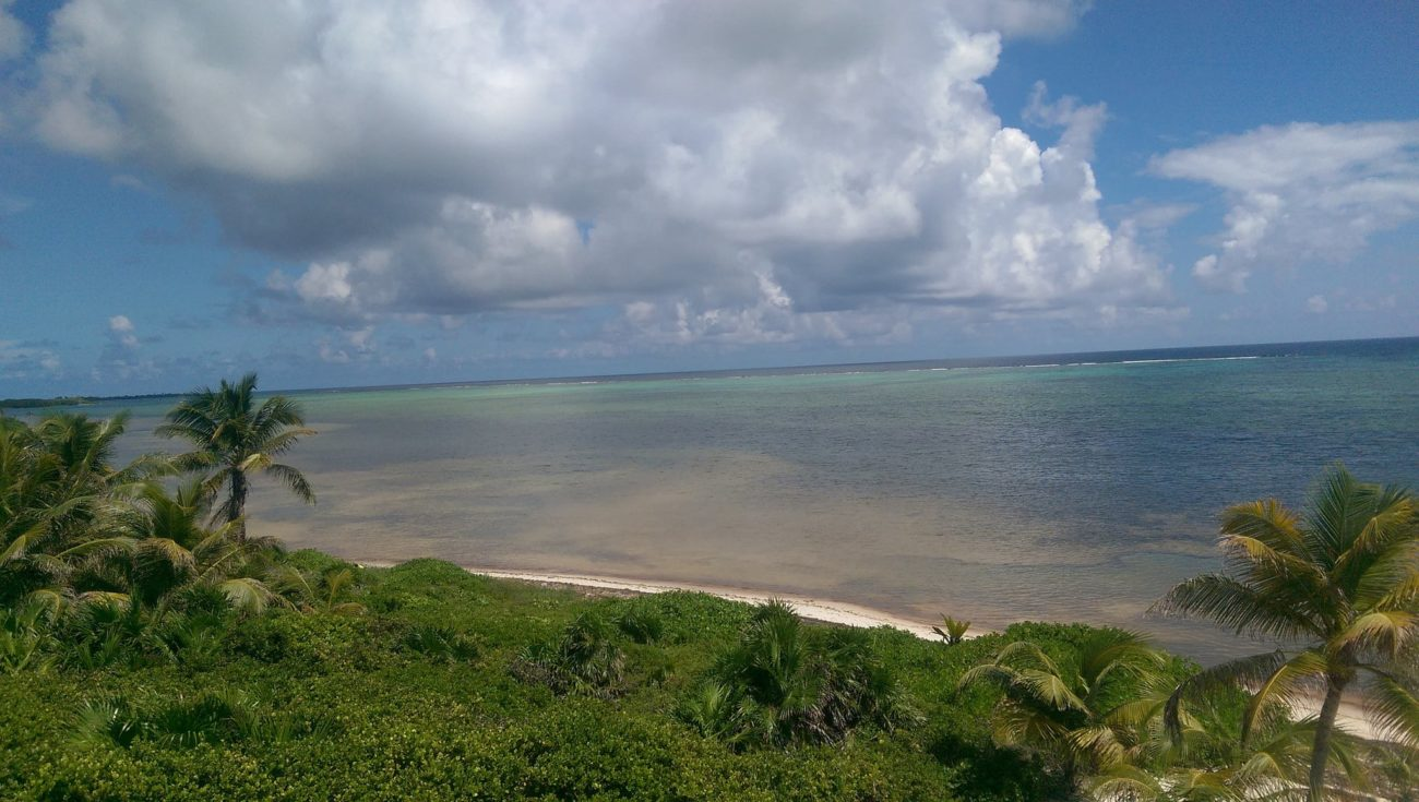 House Sitting in the Yucatan: Experiment Summary