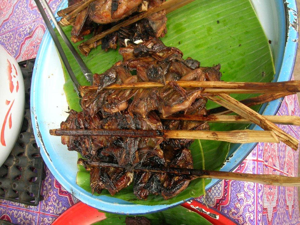Bats on a stick, a weird travel food in Laos
