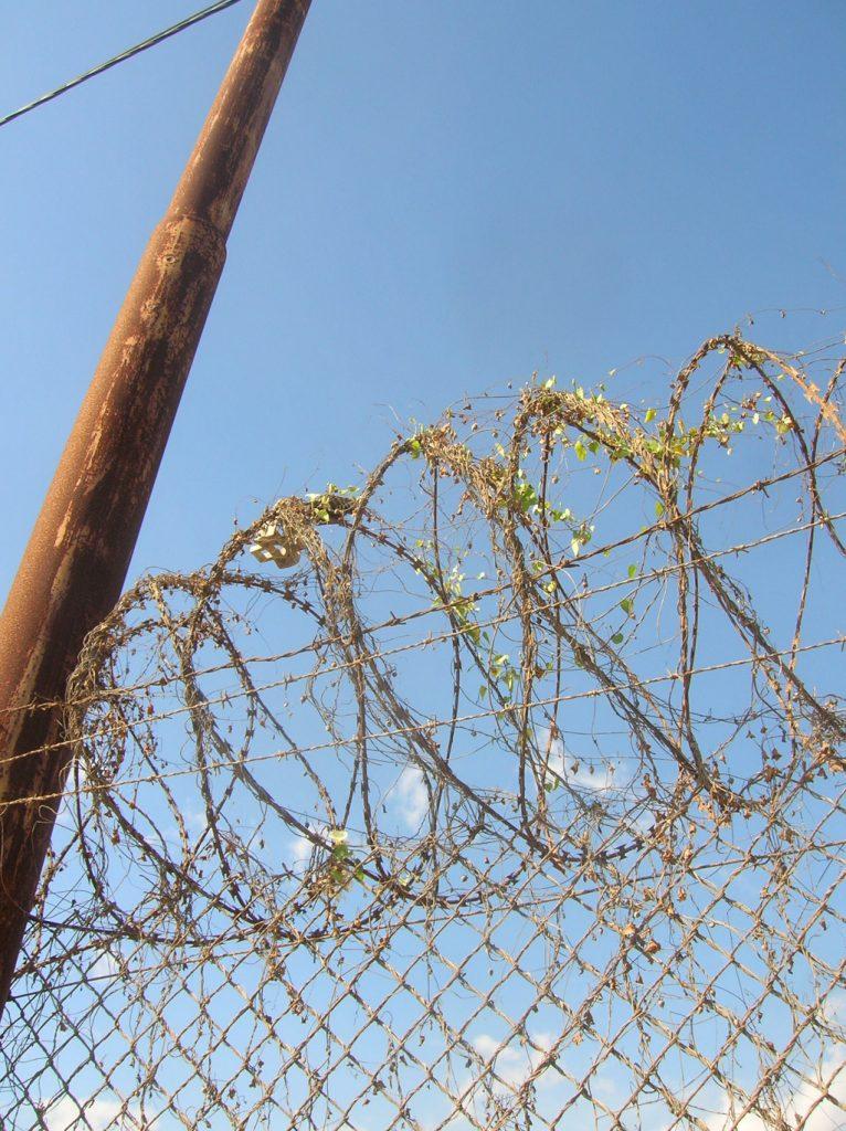Razor wire around my hostel in Dili