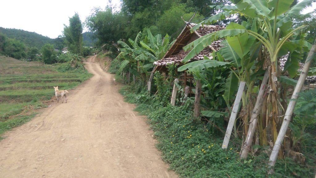 A village trail in Southeast Asia