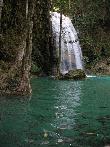 Secluded waterfall and fish in Kanchanaburi, Thailand